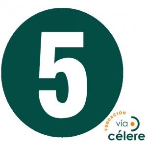 Fundación Vía Célere-5