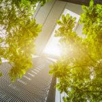 Nuevos materiales de construcción: ecología y calidad