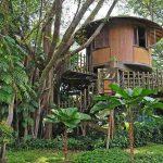 Casas construidas sobre árboles