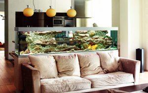 Decoración con acuarios