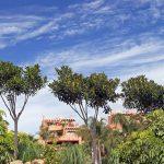 Casas de lujo en Marbella: sueña