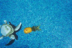 piscina residenciales via celere